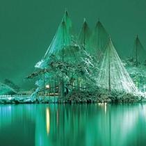 兼六園 雪吊夜