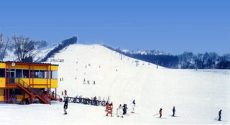奥入瀬渓流温泉スキー場