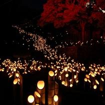 大分県三大竹祭★たけた竹灯篭■竹楽■