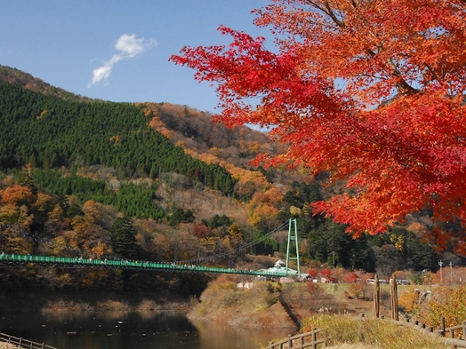 【塩原温泉郷の紅葉を見に行こう♪】1泊2食付創作和食膳+ハーフバイキングプラン