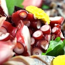 美味しい魚介類の宝庫、駿河湾の旬をお刺身で!