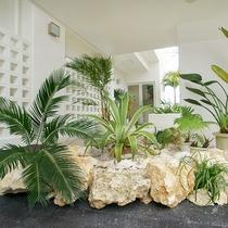 *エントランス/トロピカルな植物が旅人をお出迎え