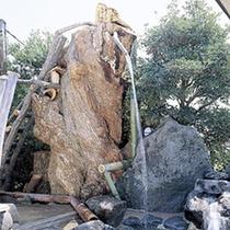 *【風呂】巨大天辺風呂(男性用)。樹齢400年の「シイの巨木」を使っています。