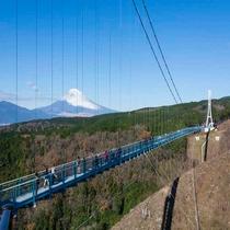 **三島スカイウォーク/当館から車で40分。全長400メートルの日本一長い歩行者専用吊橋です!