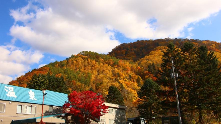 ■秋の外観■