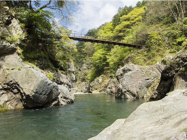 渓谷のつり橋
