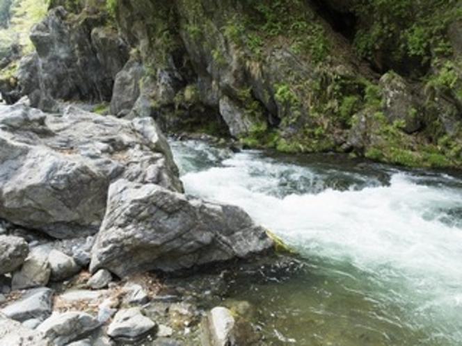 多摩川の流れ