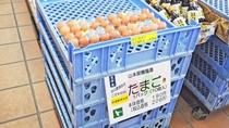 【どんぐり荘(売店)】たまごも地元の養鶏場から直送