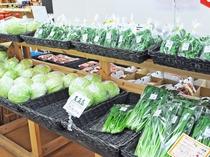 【ふるさとの家】旬の野菜は豊平の豊かな自然がたくさん感じられます