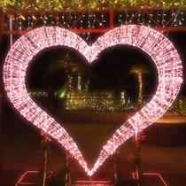 車で約30分【沖縄の冬を彩るイルミネーションイベント】かりゆしミリオンファンタジー