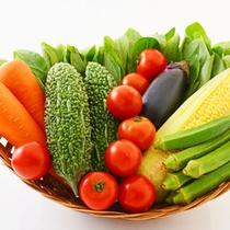 ビタミンC豊富な沖縄の元気な夏野菜でちゃんぷる(野菜炒め)を