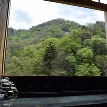 展望風呂からの眺め
