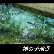 神の子池②