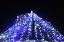 クリスマスツリー型ハウス