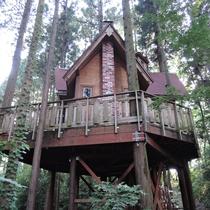 *【施設/ツリーハウス】サンタさんをお手伝いする小人の妖精「トントゥ」達の家をイメージしました。