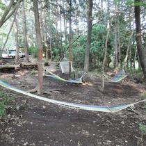 *【施設/ハンモック】自然の音色をBGMに木陰で森林浴は、いかがでしょうか?