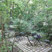 *【施設/ベンチ】つい背伸びをしたくなる心地よい森の中でリフレッシュ!