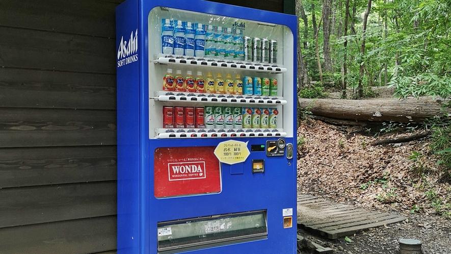 *【案内図】炊事場・ランドリー・自動販売機など完備!広々とした森の中をぜひご散策ください。
