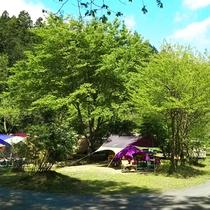 *【キャンプ場】広々とした開放的な空間でキャンプをお楽しみいただけます。日常を忘れてリフレッシュ♪