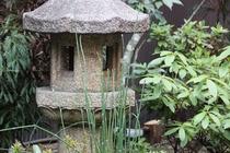 庭の雰囲気 Garden