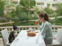 愛犬と食事