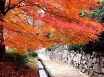 延暦寺の門前町・坂本(秋)