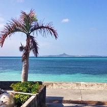 海岸から伊江島を望む