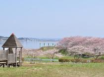 【周辺:長沼フートピア公園】チューリップ園やキャンプ場など大きな公園です