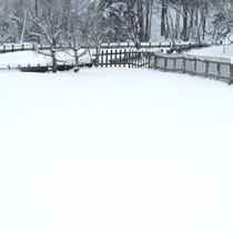 *氷点下の真っ白な世界
