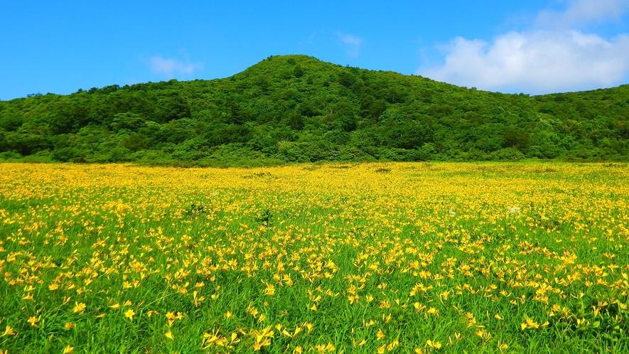 【雄国沼(おぐにぬま)】裏磐梯エリア。標高1000Mの位置する。ニッコウキスゲが6月に見頃を迎える。