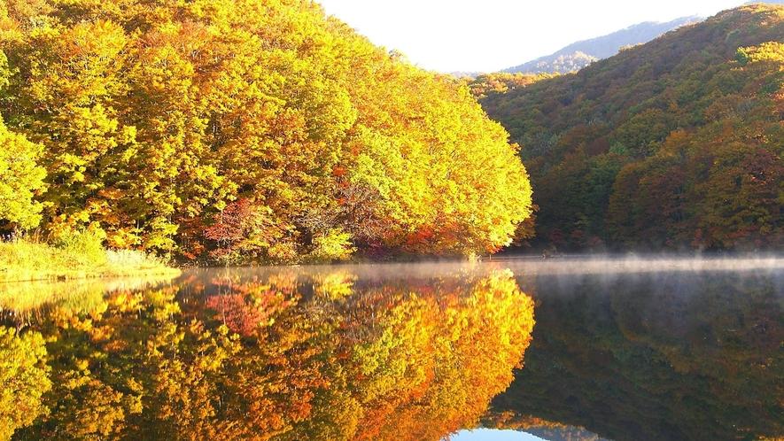 【秋の曲沢沼】紅葉時には色づいた木々が湖面に映り込み撮影ポイントの一つ。