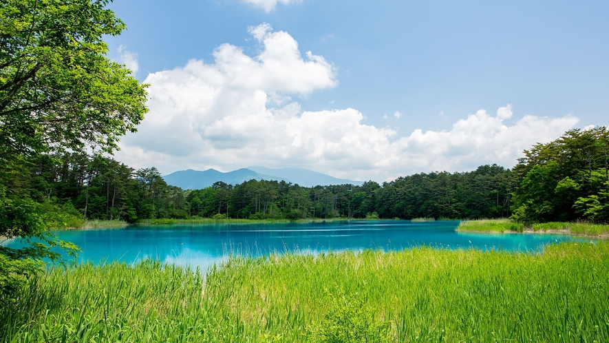 【五色沼】時間や天気によって見える色が異なり、まるで絵具を溶かしたように多彩な色を織り成す五色沼。