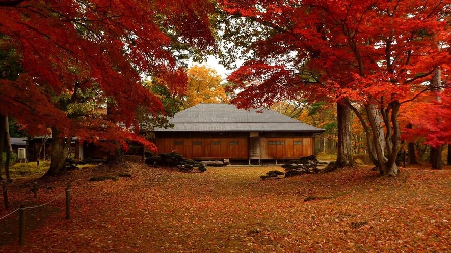 <秋>【錦秋ドライブと高原散策】絶景を楽しむドライブツアー。紅葉が綺麗なルートを選定。