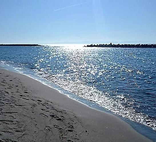 青山海岸です。