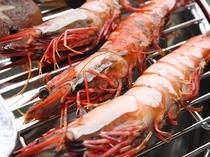 雑賀崎漁港から直接仕入れの足赤エビ。肉厚なエビの甘みを炭火焼きでお楽しみください。