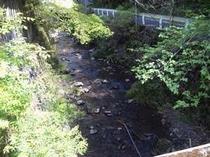 川だ〜遊ぼう〜〜