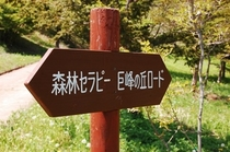 森林セラピー巨峰の丘ロード