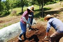 農園作りプラン