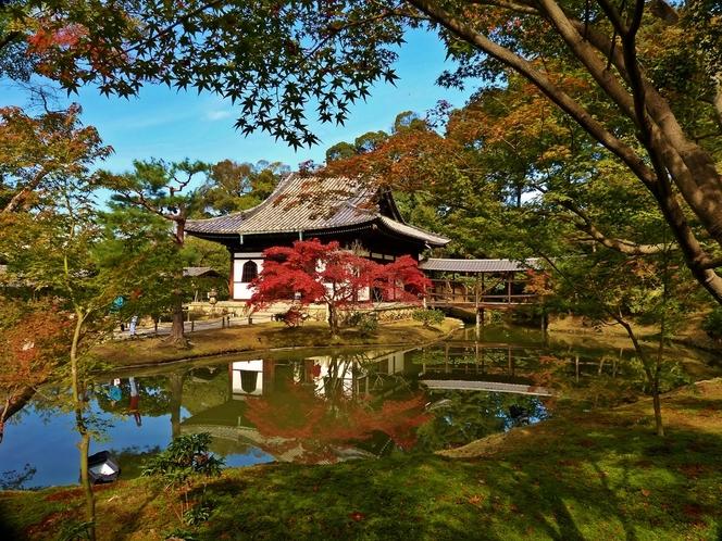 高台寺の初秋