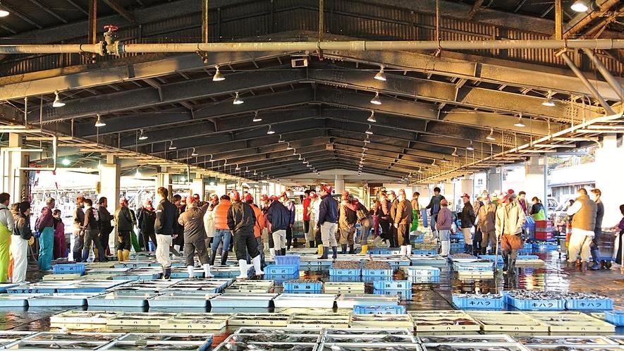 豊浜市場「せり」の様子