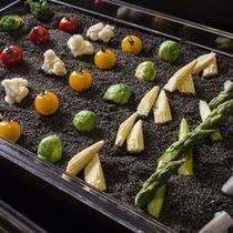 【ブッフェ】伊達産のミニトマトや喜茂別産アスパラなど、地元の採れたて野菜たち。