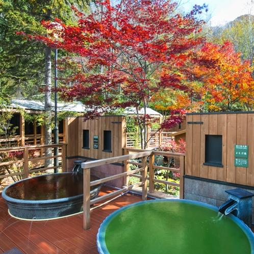 【森の散歩湯WOOD SPA】緑の中に赤や黄色の紅葉が美しく鮮やかに映える。