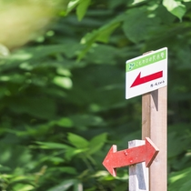 【散策コース】約900m・30~40分程度のコースです。矢印がさす方向へお進みください。