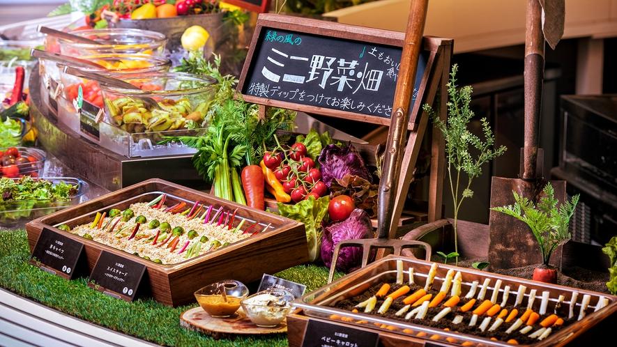 【ブッフェ一例】緑の風のミニ畑 掘り出した野菜は特製ディップで。
