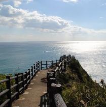 【日向岬】一面大海原の絶景が望めます!(ホテルより車で約15分)