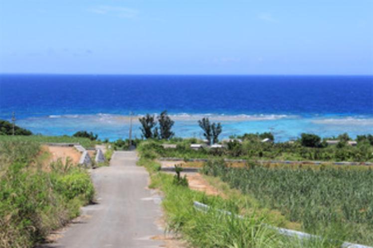 ・コテージから海への道も絶景です