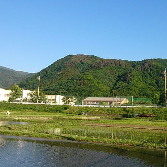 松代の緑豊な夏の風景一例