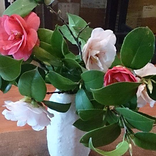 美しい季節の花のあしらい一例