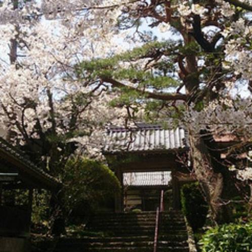 松代の観光-春 (3)