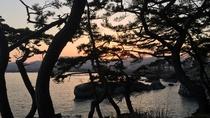 *龍の松/当館目の前、岩井崎の先端にある「龍の松」は震災復興のシンボルです!